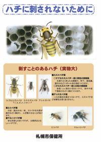 ハチに刺されないために