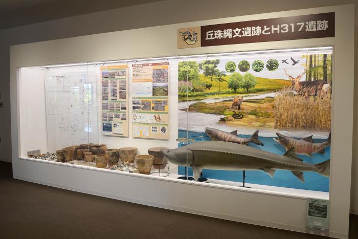okadama Jomon exhibition room 04