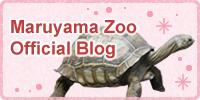 Maruyama Zoo official blog